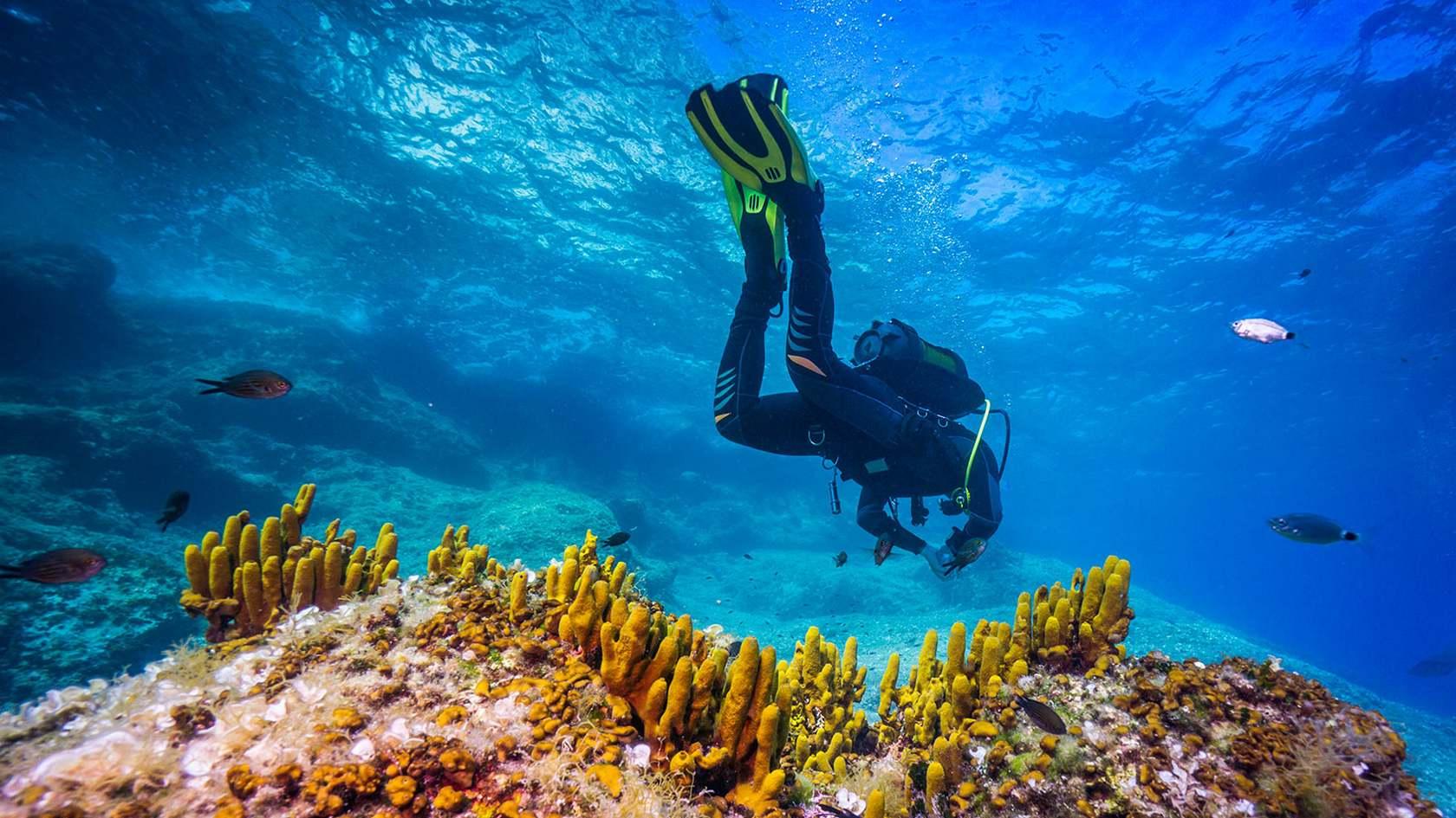 ТОП-5 фактов о «подводной империи» — чего мы не знаем про кабели, которые лежат на дне океанов